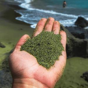 Read more about the article Capturer le CO2